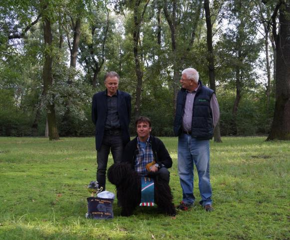 Nyírségfia Üstökös - 2014. év Puli Fesztivál legszebbje